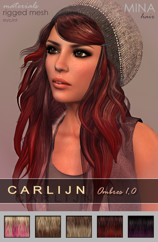 MINA Hair - Carlijn Ombres TDR